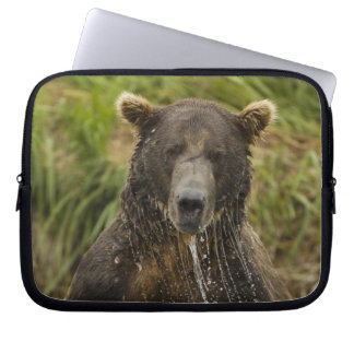 Brown bear, male, fishing for salmon laptop computer sleeves
