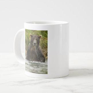 Brown bear, male, fishing for salmon large coffee mug