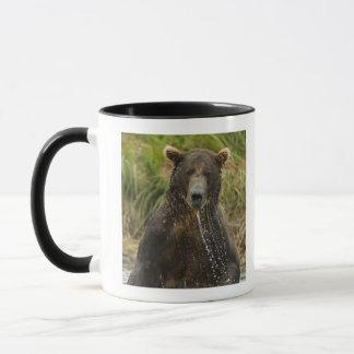 Brown bear, male, fishing for salmon mug
