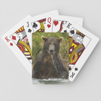 Brown bear, male, fishing for salmon playing cards