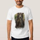 Brown bear, male, fishing for salmon tee shirt