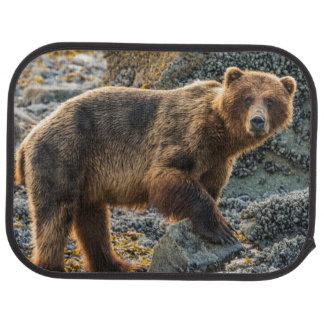 Brown bear on beach 2 car mat