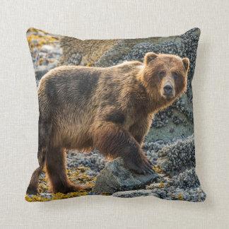 Brown bear on beach 2 cushion