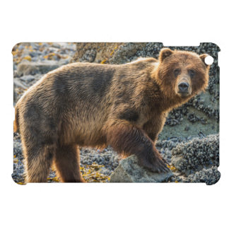 Brown bear on beach 2 iPad mini case