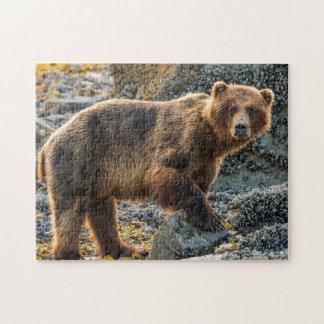 Brown bear on beach 2 jigsaw puzzle