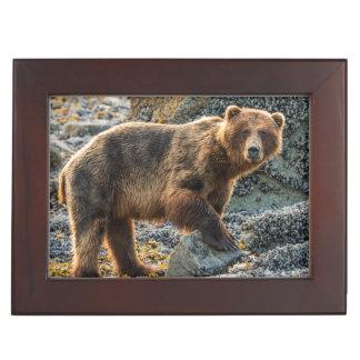 Brown bear on beach 2 keepsake box