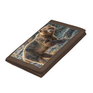 Brown bear on beach 2 trifold wallet