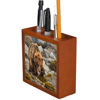 Brown bear on beach 3 desk organiser