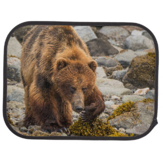 Brown bear on beach 3 floor mat