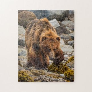 Brown bear on beach 3 jigsaw puzzle