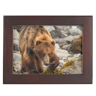 Brown bear on beach 3 keepsake box
