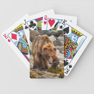 Brown bear on beach 3 poker deck
