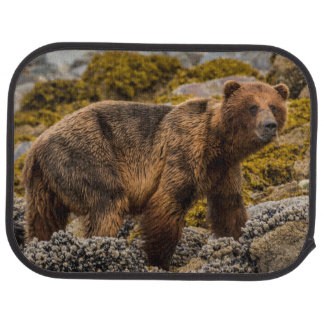 Brown bear on beach car mat