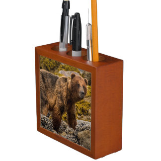 Brown bear on beach desk organiser