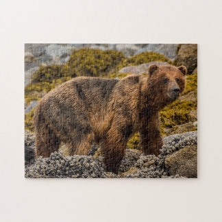 Brown bear on beach jigsaw puzzle