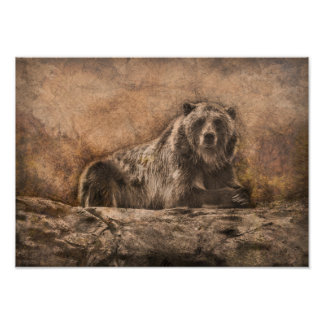 Brown Bear on the Rock Poster
