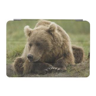 Brown bear, or Coastal Grizzly Bear, Ursus iPad Mini Cover