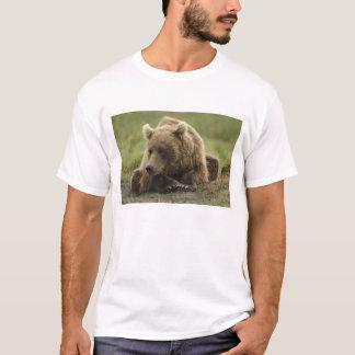 Brown bear, or Coastal Grizzly Bear, Ursus T-Shirt