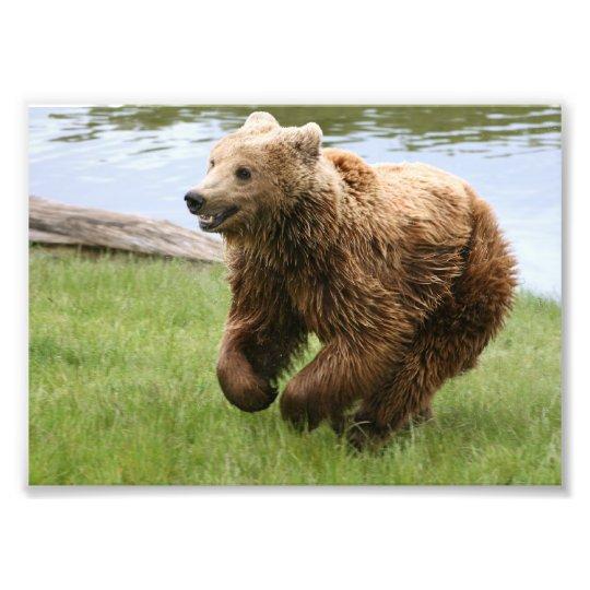 Brown Bear Running Photo Print