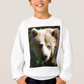 Brown bear sweatshirt