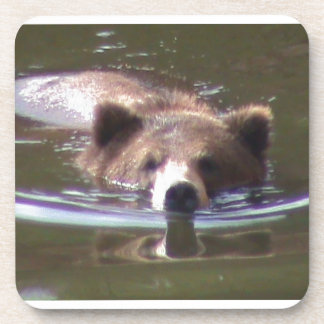 Brown Bear swimming Drink Coasters