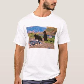 Brown Bear, Ursus arctos, Alaska Peninsula, T-Shirt