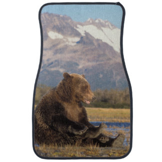 brown bear, Ursus arctos, grizzly bear, Ursus 2 Floor Mat