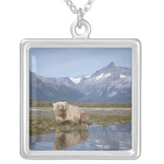 brown bear, Ursus arctos, grizzly bear, Ursus 4 Silver Plated Necklace