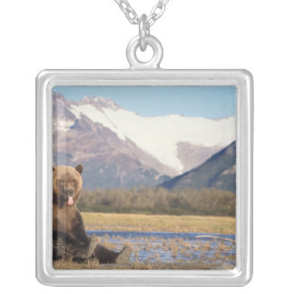 brown bear, Ursus arctos, grizzly bear, Ursus 5 Silver Plated Necklace