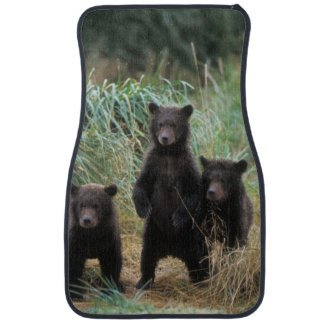 brown bear, Ursus arctos, grizzly bear, Ursus 7 2 Car Mat