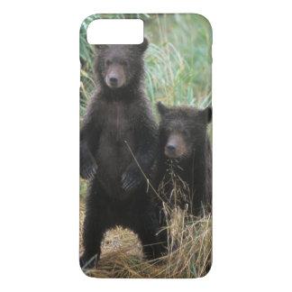 brown bear, Ursus arctos, grizzly bear, Ursus 7 2 iPhone 8 Plus/7 Plus Case
