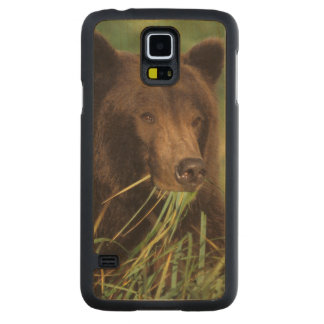 brown bear, Ursus arctos, grizzly bear, Ursus 7 Carved Maple Galaxy S5 Case