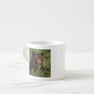 brown bear, Ursus arctos, grizzly bear, Ursus 7 Espresso Cup