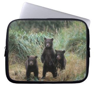brown bear, Ursus arctos, grizzly bear, Ursus 7 Laptop Sleeve
