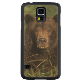 brown bear, Ursus arctos, grizzly bear, Ursus 9 Carved Maple Galaxy S5 Case