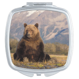 brown bear, Ursus arctos, grizzly bear, Ursus Compact Mirrors