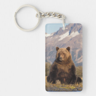 brown bear, Ursus arctos, grizzly bear, Ursus Double-Sided Rectangular Acrylic Key Ring