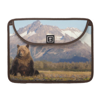 brown bear, Ursus arctos, grizzly bear, Ursus Sleeve For MacBooks