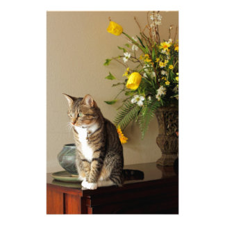 Brown black Tabby cat Sitting on piano flowers Stationery Paper