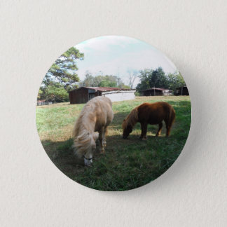 "Brown Blond, Two Miniature Horses, ""Little Pony "" 6 Cm Round Badge"