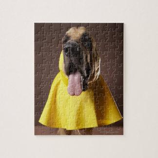 Brown bloodhound dog wearing yellow raincoat jigsaw puzzle