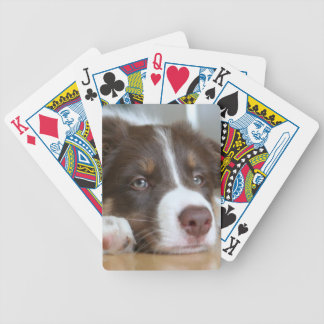 Brown Border Collie Dog Playing Cards