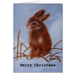 Brown Bunny In The Snow Card