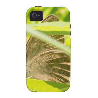 Brown Butterfly Case-Mate iPhone 4 Cover