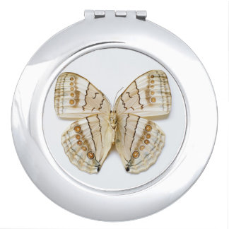 Brown Butterfly, overhead view Mirrors For Makeup