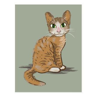 Brown Cat Illustration Postcard