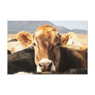 Brown Cow Art Canvas Print
