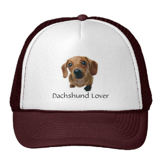 Brown Dachshund Pup Cap