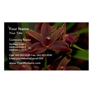 Brown Dendrobium flowers Business Card Templates
