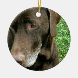 Brown Dog Round Ceramic Decoration